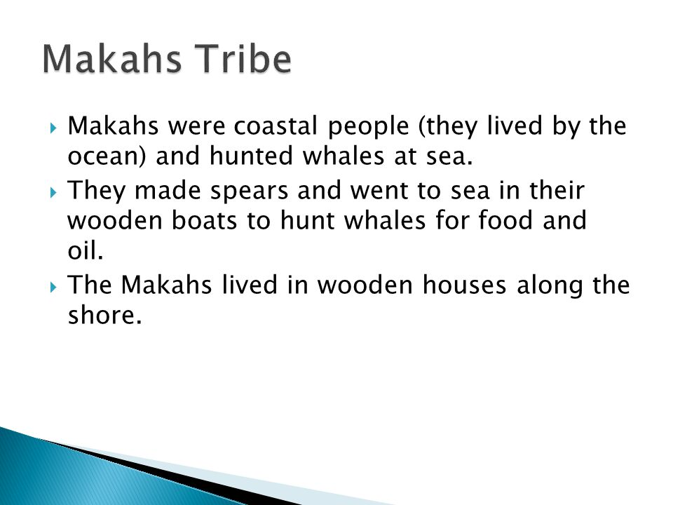 Makahs were coastal people (they lived by the ocean) and hunted whales at sea.