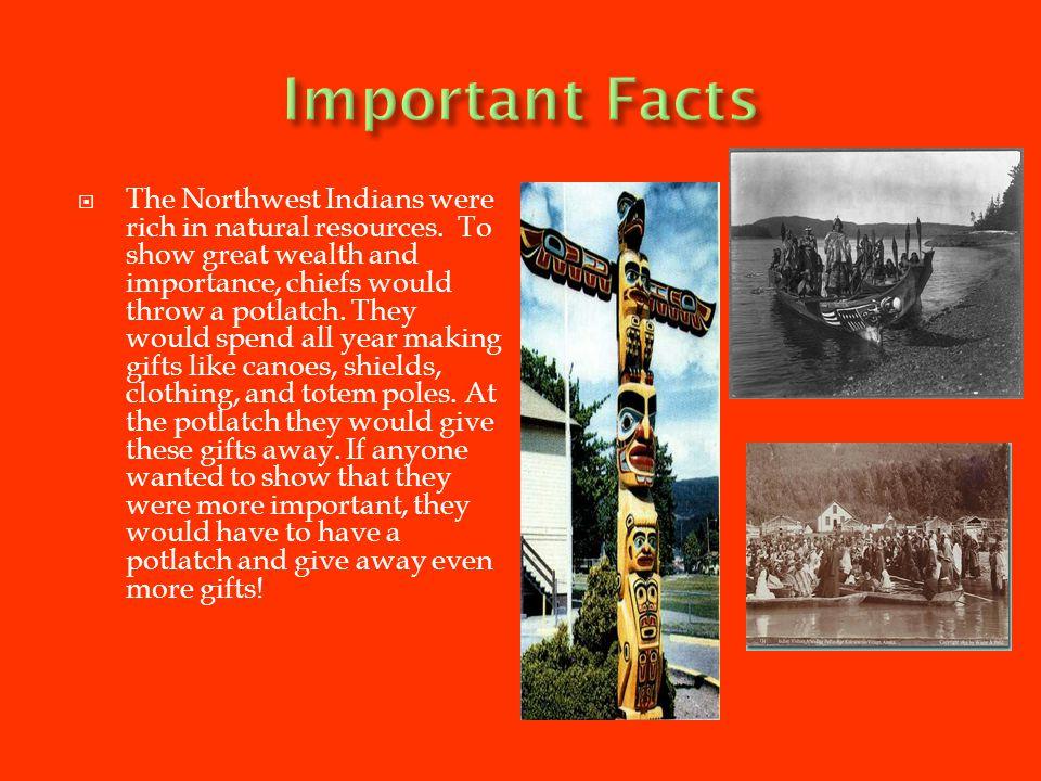 TThe Northwest Indians made shirts out of shredded cedar bark.