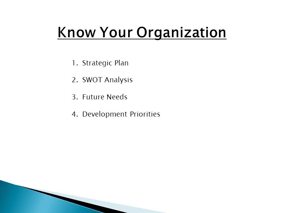 Know Your Organization 1.Strategic Plan 2.SWOT Analysis 3.Future Needs 4.Development Priorities