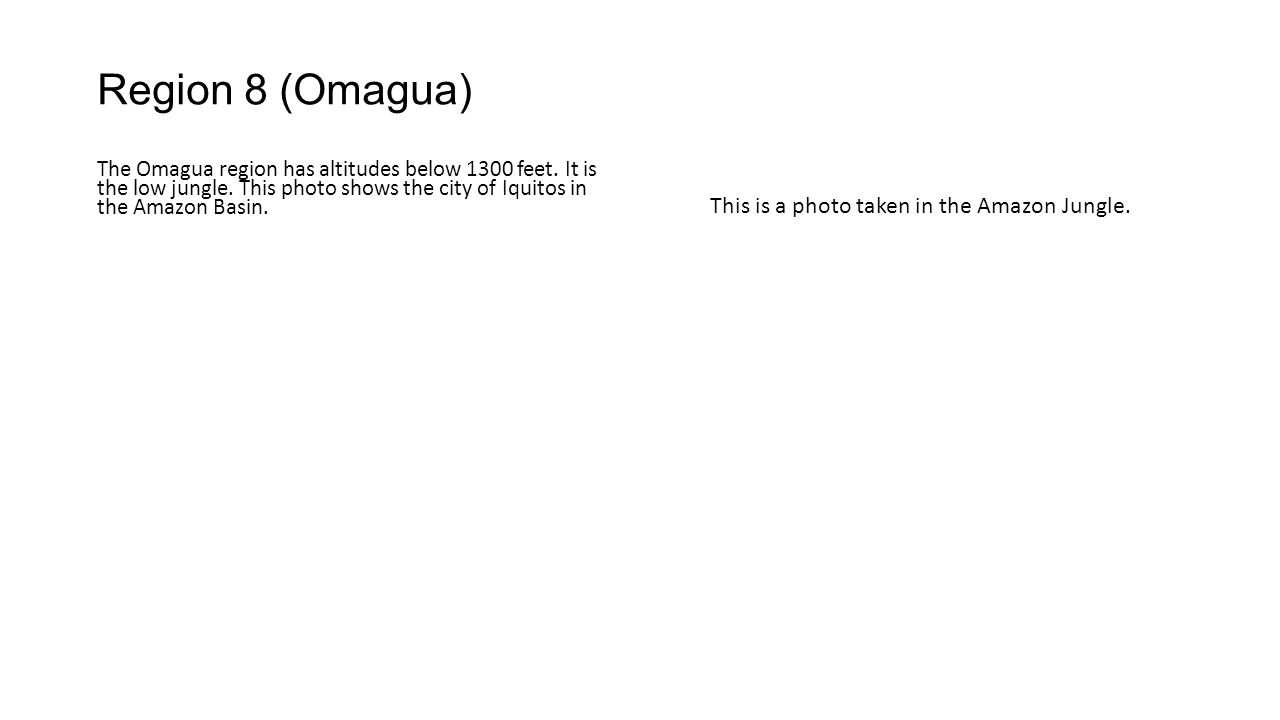 Region 8 (Omagua) The Omagua region has altitudes below 1300 feet.