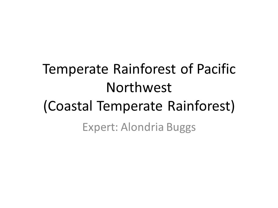 Temperate Rainforest of Pacific Northwest (Coastal Temperate Rainforest) Expert: Alondria Buggs