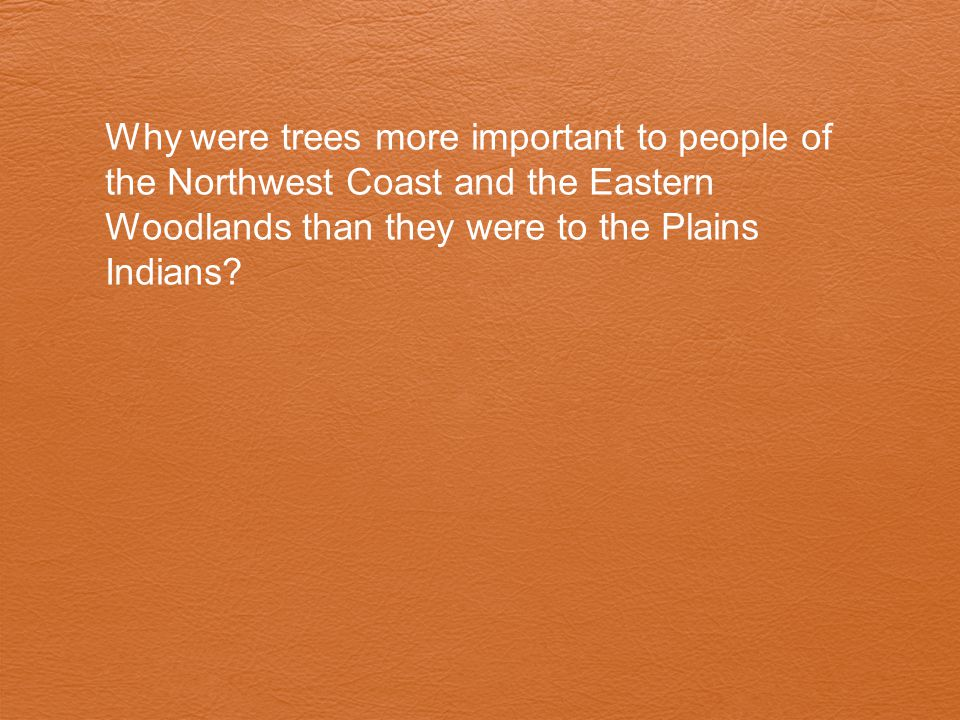 Why were trees more important to people of the Northwest Coast and the Eastern Woodlands than they were to the Plains Indians?