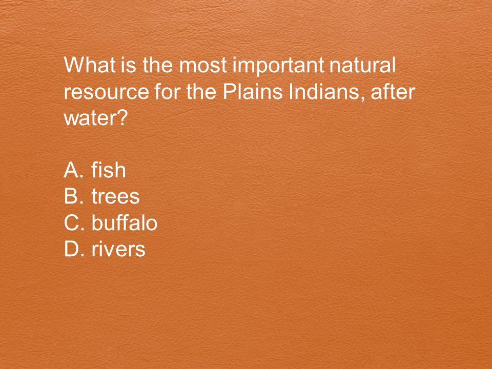 What is the most important natural resource for the Plains Indians, after water? A.fish B.trees C.buffalo D.rivers
