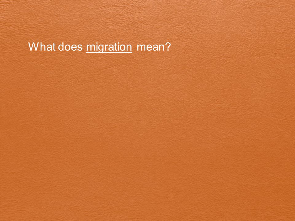 What does migration mean?