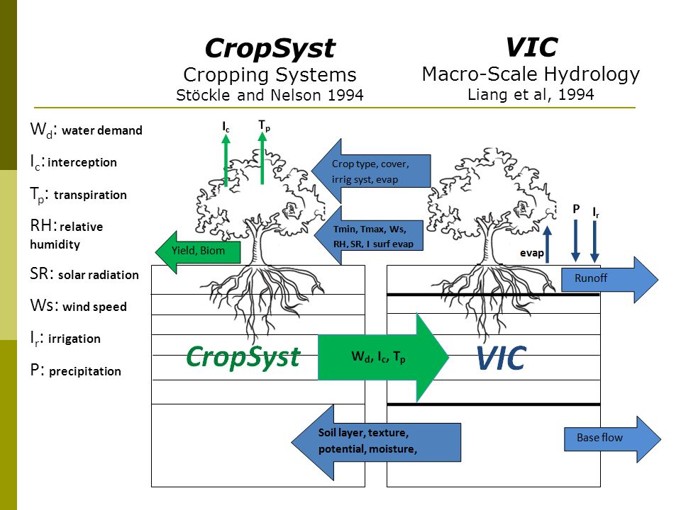 VIC Macro-Scale Hydrology Liang et al, 1994 CropSyst Cropping Systems Stöckle and Nelson 1994 W d : water demand I c : interception T p : transpiration RH: relative humidity SR: solar radiation Ws: wind speed I r : irrigation P: precipitation