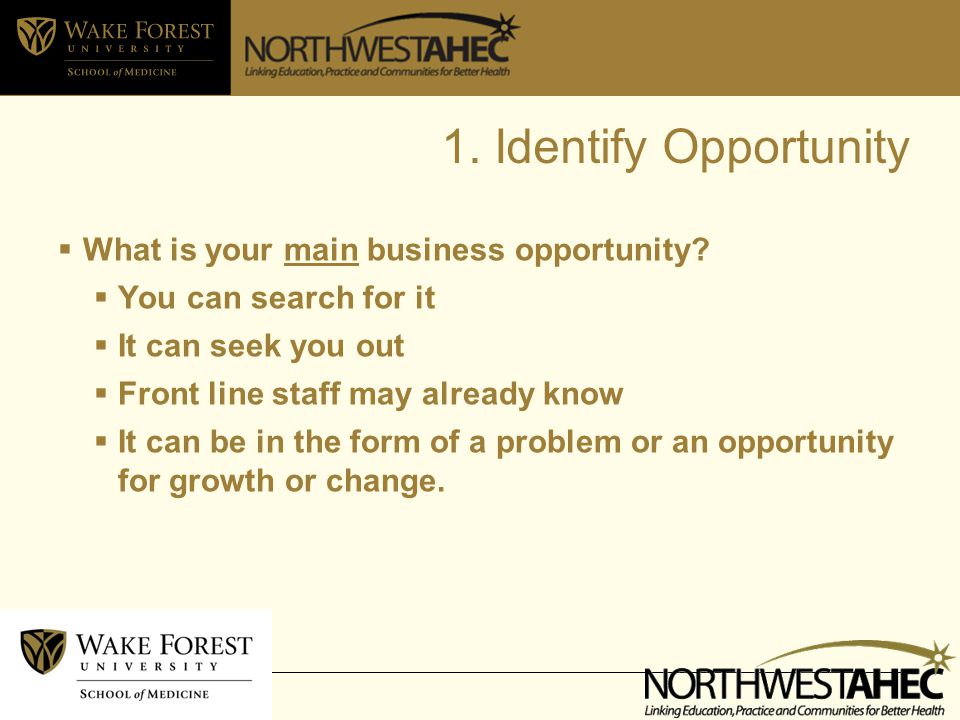 1. Identify Opportunity  What is your main business opportunity.