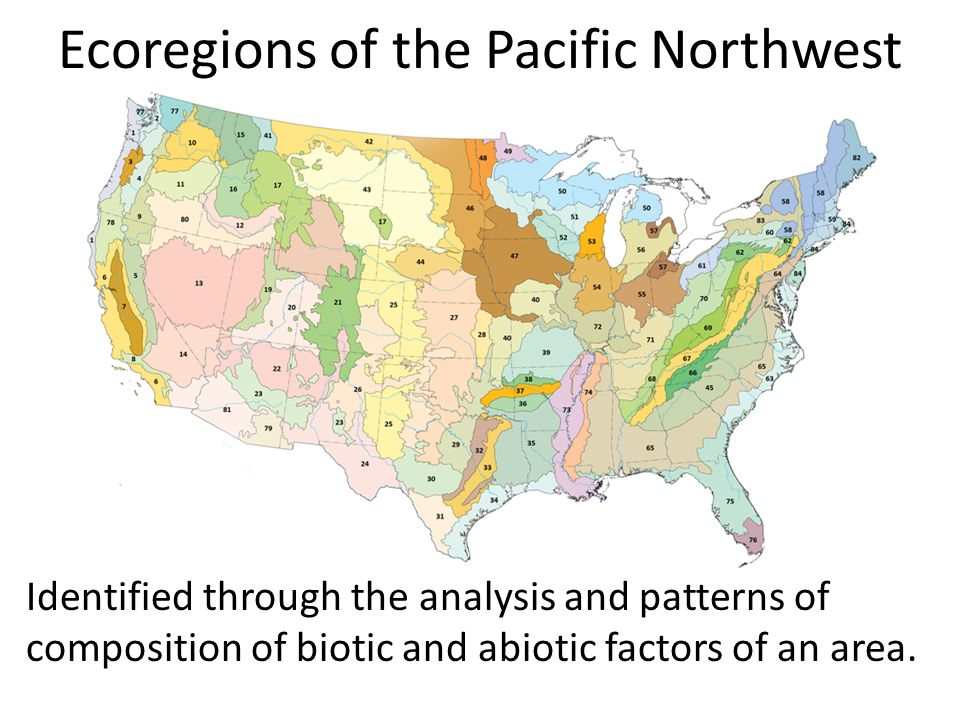 Ecoregions of the Pacific Northwest Identified through the analysis and patterns of composition of biotic and abiotic factors of an area.