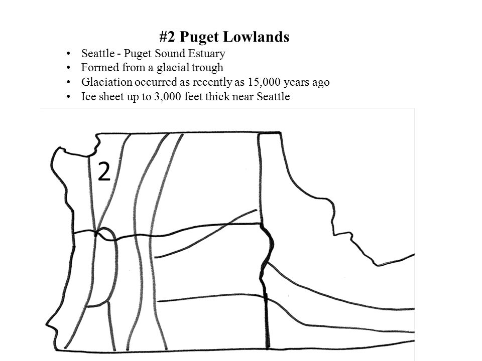 2 #2 Puget Lowlands Seattle - Puget Sound Estuary Formed from a glacial trough Glaciation occurred as recently as 15,000 years ago Ice sheet up to 3,0