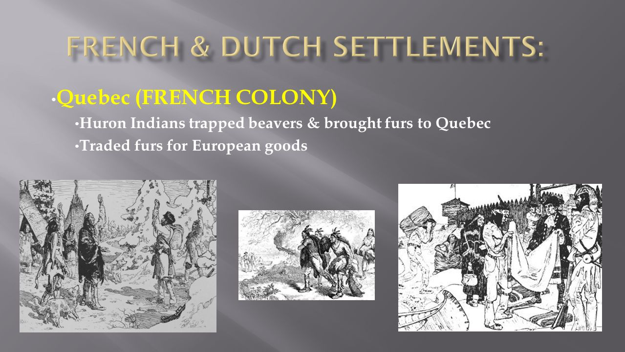 Quebec (FRENCH COLONY) Huron Indians trapped beavers & brought furs to Quebec Traded furs for European goods