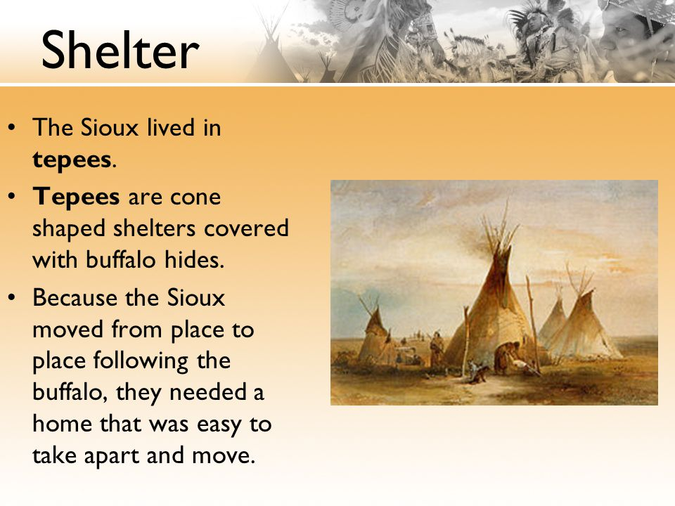 Shelter The Sioux lived in tepees. Tepees are cone shaped shelters covered with buffalo hides. Because the Sioux moved from place to place following t