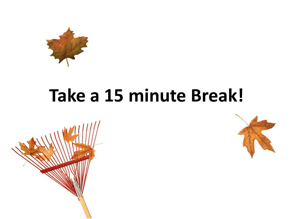 Take a 15 minute Break!