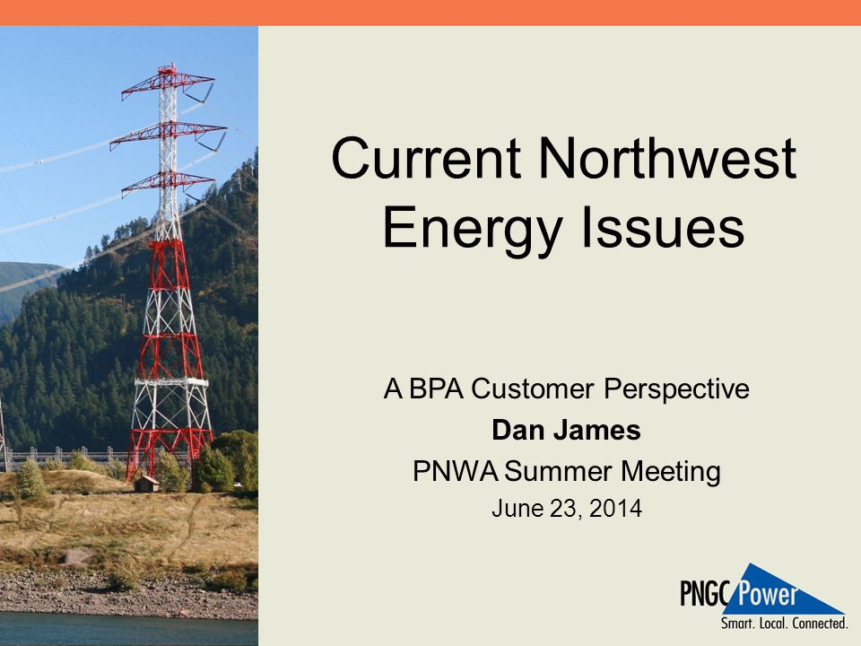 Current Northwest Energy Issues A BPA Customer Perspective Dan James PNWA Summer Meeting June 23, 2014