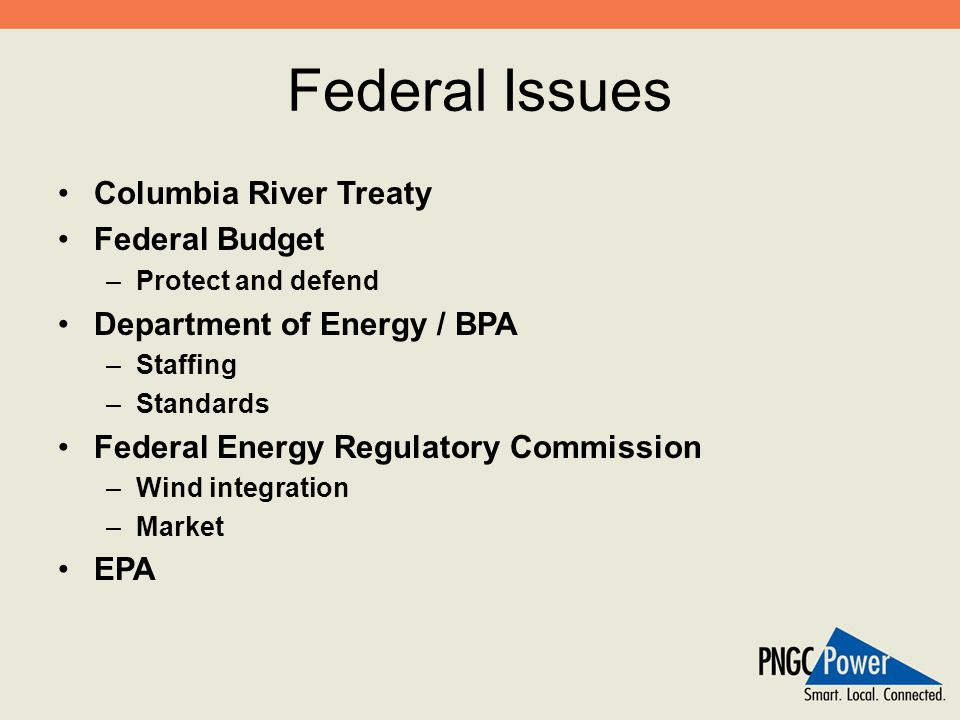 Federal Issues Columbia River Treaty Federal Budget –Protect and defend Department of Energy / BPA –Staffing –Standards Federal Energy Regulatory Comm
