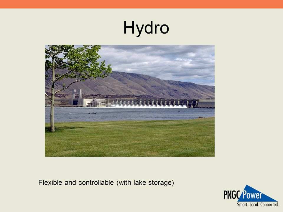 Hydro Flexible and controllable (with lake storage)