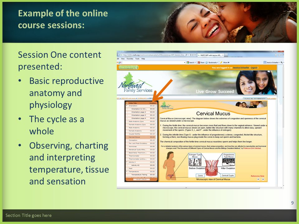 How is the content presented online.