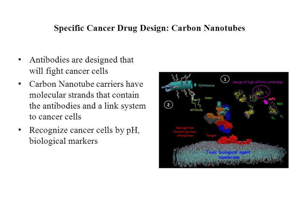 Specific Cancer Drug Design: Carbon Nanotubes Antibodies are designed that will fight cancer cells Carbon Nanotube carriers have molecular strands that contain the antibodies and a link system to cancer cells Recognize cancer cells by pH, biological markers