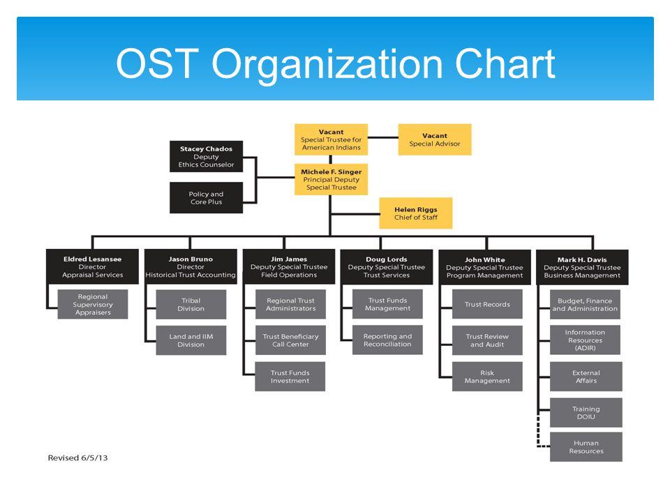 OST Organization Chart