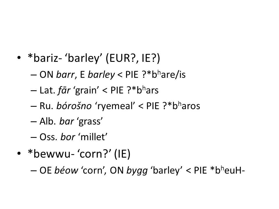 *bariz- 'barley' (EUR , IE ) – ON barr, E barley < PIE *b h are/is – Lat.