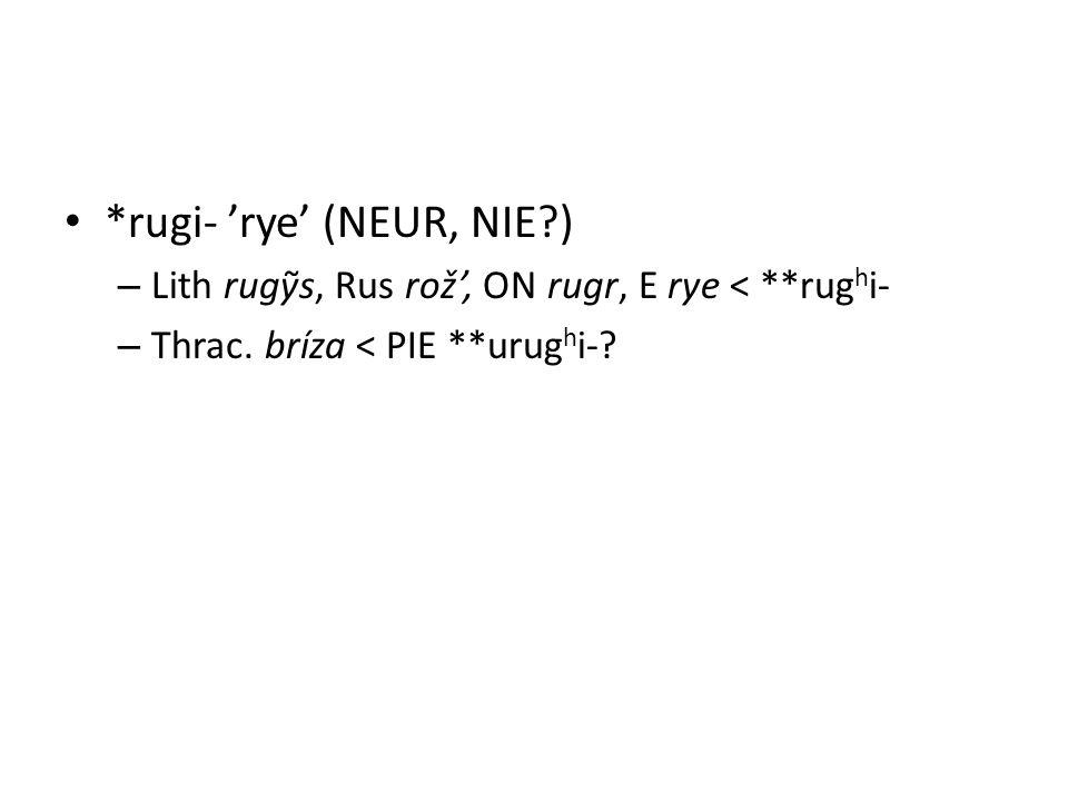 *rugi- 'rye' (NEUR, NIE ) – Lith rugỹs, Rus rož', ON rugr, E rye < **rug h i- – Thrac.
