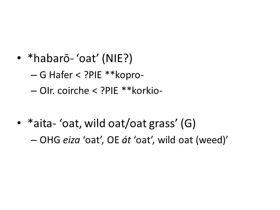 *habarō- 'oat' (NIE?) – G Hafer < ?PIE **kopro- – OIr. coirche < ?PIE **korkio- *aita- 'oat, wild oat/oat grass' (G) – OHG eiza 'oat', OE át 'oat', wi