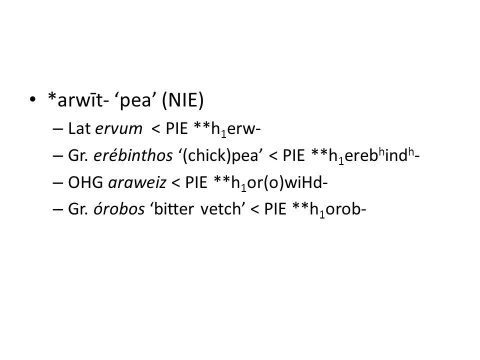 *arwīt- 'pea' (NIE) – Lat ervum < PIE **h 1 erw- – Gr.