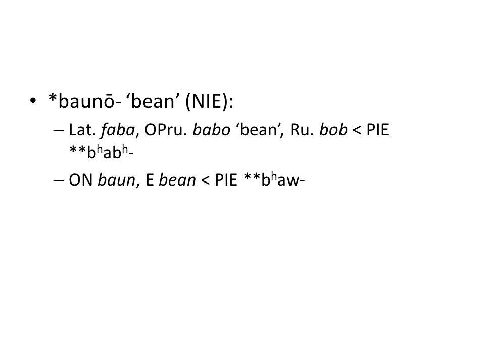*baunō- 'bean' (NIE): – Lat. faba, OPru. babo 'bean', Ru. bob < PIE **b h ab h - – ON baun, E bean < PIE **b h aw-