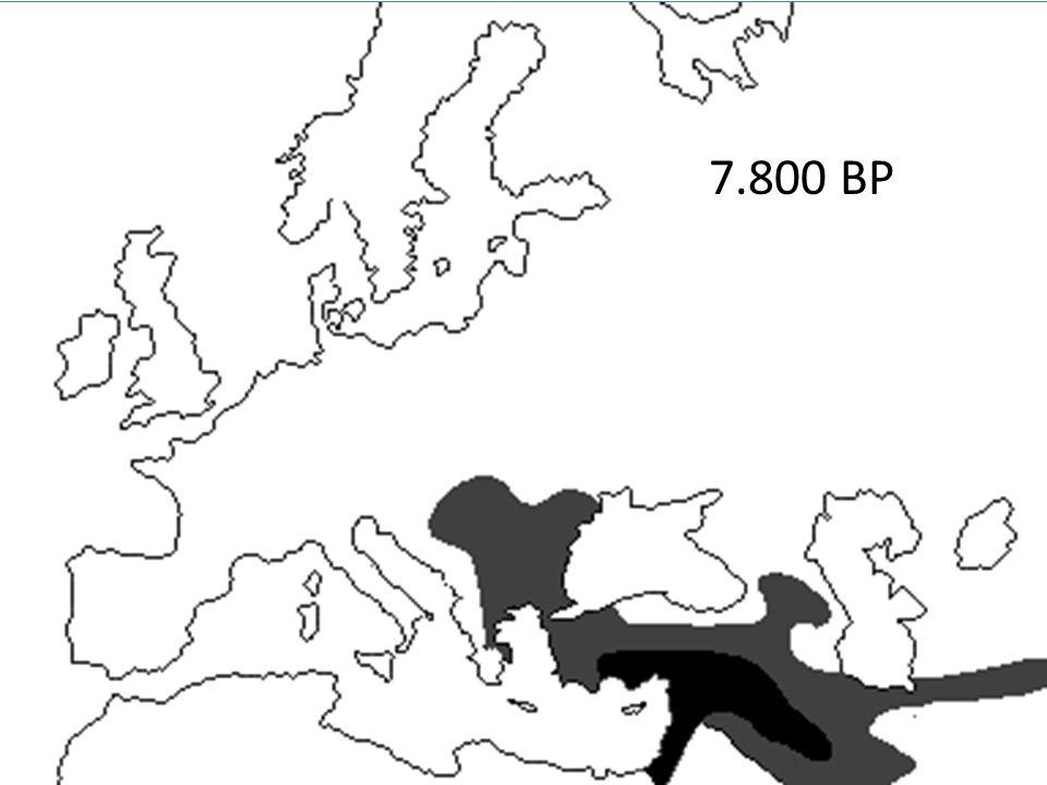 kurgans 6.000 BP
