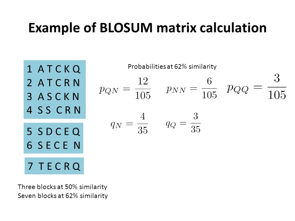 Example of BLOSUM matrix calculation 1A T C K Q 2A T C R N 3A S C K N 4S S C R N 5S D C E Q 6S E C E N 7 T E C R Q Three blocks at 50% similarity Seven blocks at 62% similarity Probabilities at 62% similarity