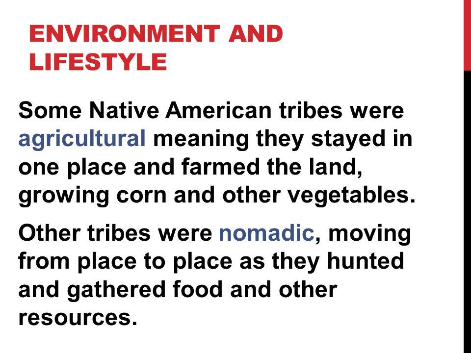 BUFFALO HORN HEADDRESS OF THE PLAINS INDIANS. Tsimshian bear headdress Headdresses
