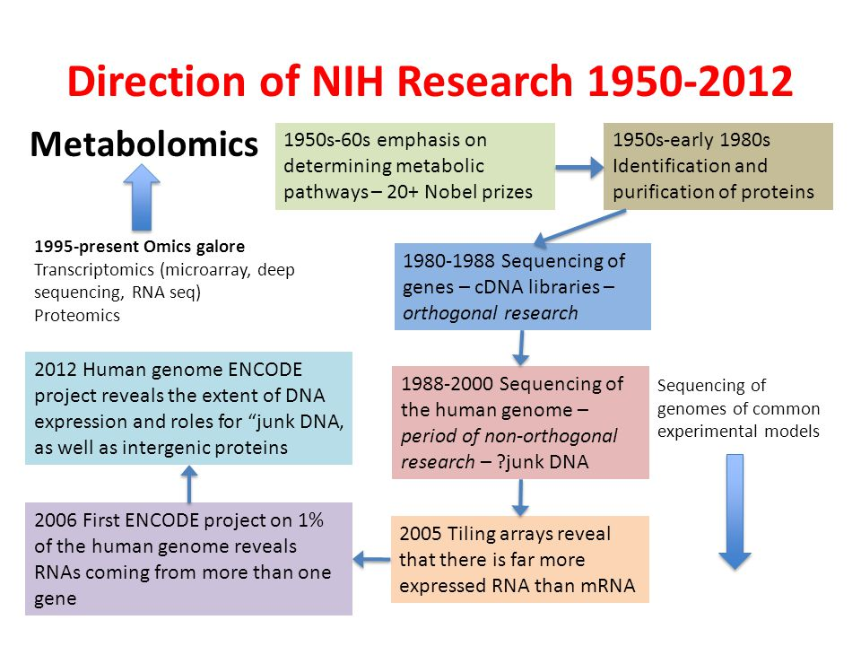 Direction of NIH Research 1950-2012 1950s-60s emphasis on determining metabolic pathways – 20+ Nobel prizes Sequencing of genomes of common experimental models 1995-present Omics galore Transcriptomics (microarray, deep sequencing, RNA seq) Proteomics Metabolomics 1950s-early 1980s Identification and purification of proteins 1980-1988 Sequencing of genes – cDNA libraries – orthogonal research 1988-2000 Sequencing of the human genome – period of non-orthogonal research – junk DNA 2005 Tiling arrays reveal that there is far more expressed RNA than mRNA 2006 First ENCODE project on 1% of the human genome reveals RNAs coming from more than one gene 2012 Human genome ENCODE project reveals the extent of DNA expression and roles for junk DNA, as well as intergenic proteins