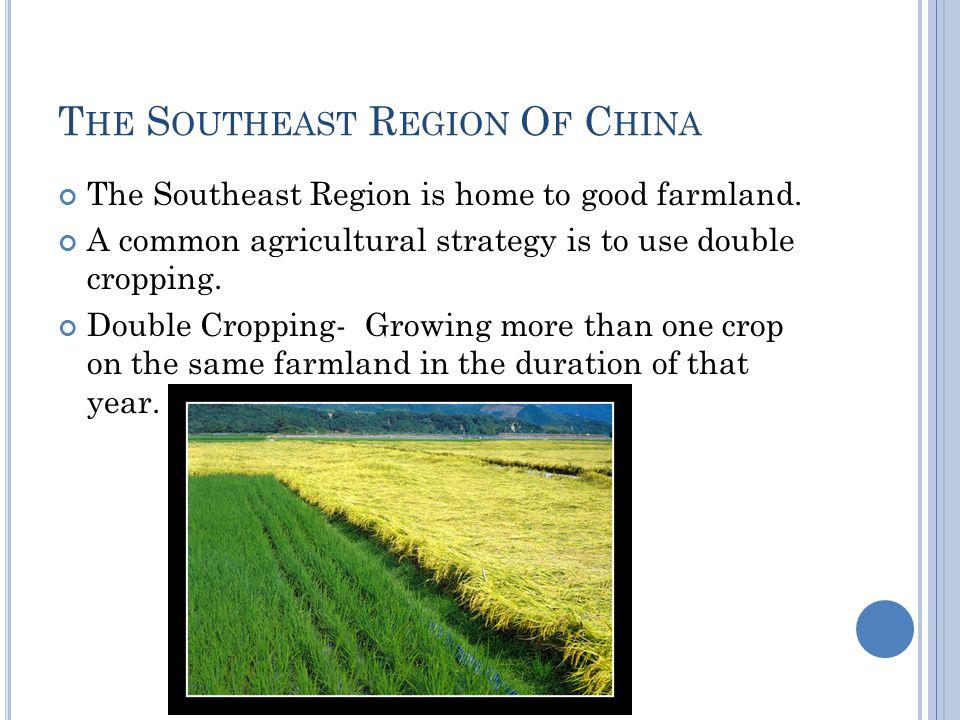 T HE S OUTHEAST R EGION O F C HINA The Southeast Region is home to good farmland.