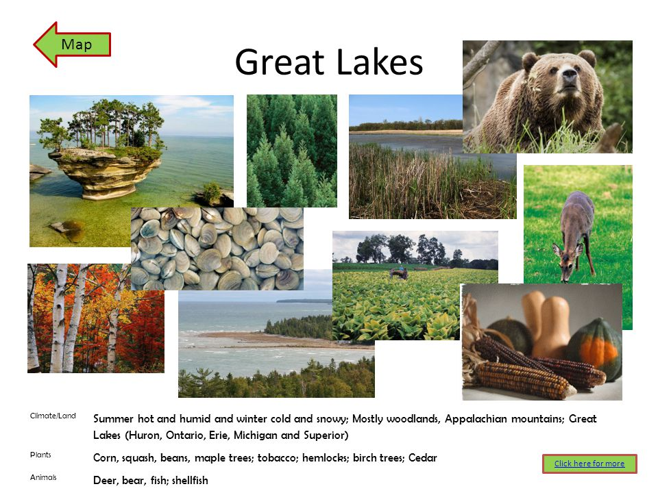 Great Lakes Map Click here for more Climate/Land Summer hot and humid and winter cold and snowy; Mostly woodlands, Appalachian mountains; Great Lakes