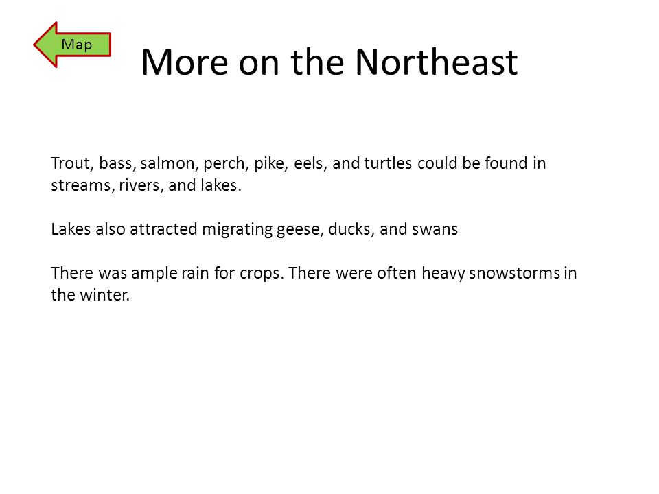 More on the Northeast Map Trout, bass, salmon, perch, pike, eels, and turtles could be found in streams, rivers, and lakes. Lakes also attracted migra