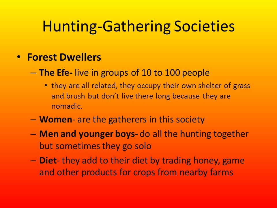 Hunting-Gathering Societies Forest Dwellers – The Efe- live in groups of 10 to 100 people they are all related, they occupy their own shelter of grass and brush but don't live there long because they are nomadic.