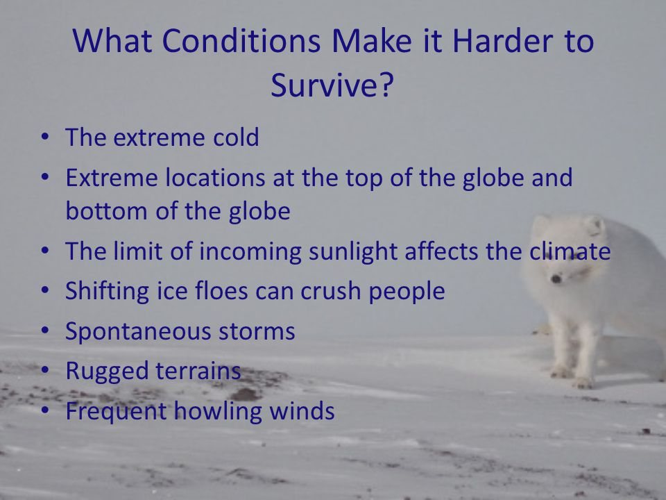 What Conditions Make it Harder to Survive? The extreme cold Extreme locations at the top of the globe and bottom of the globe The limit of incoming su