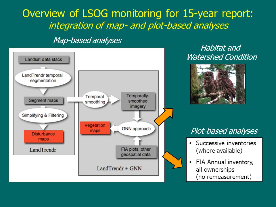 Overview of LSOG monitoring for 15-year report: integration of map- and plot-based analyses Map-based analyses Plot-based analyses Successive inventor