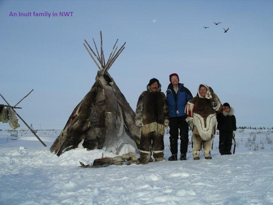 Regular entertainment in the Northwest Territories.
