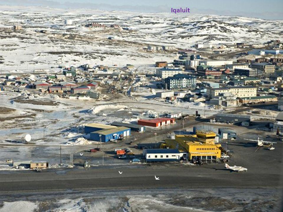 King of Nunavut
