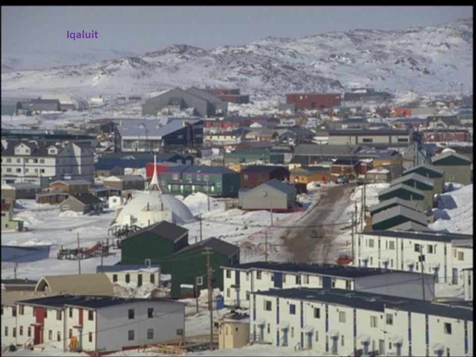 Regular show in Nunavut