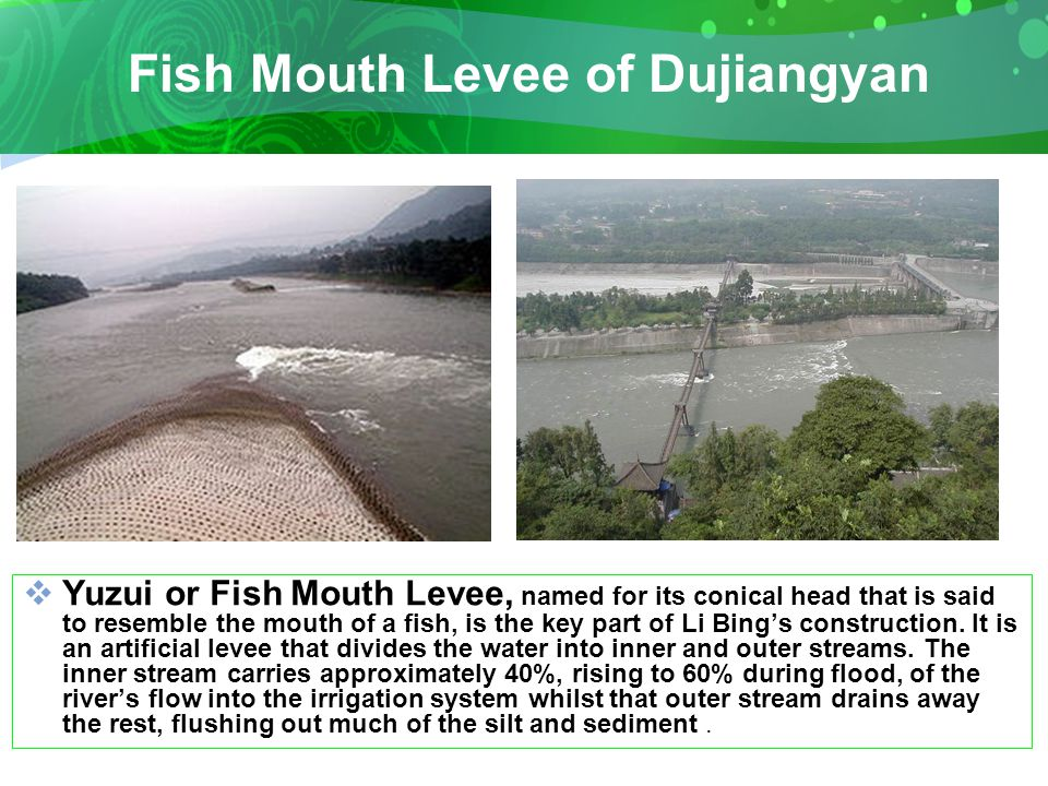 Fish Mouth Levee of Dujiangyan  Yuzui or Fish Mouth Levee, named for its conical head that is said to resemble the mouth of a fish, is the key part of Li Bing's construction.