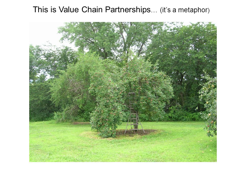 This is Value Chain Partnerships … (it's a metaphor )