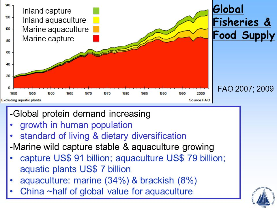 Global Fisheries & Food Supply FAO 2007; 2009 Inland capture Inland aquaculture Marine aquaculture Marine capture -Global protein demand increasing growth in human population standard of living & dietary diversification -Marine wild capture stable & aquaculture growing capture US$ 91 billion; aquaculture US$ 79 billion; aquatic plants US$ 7 billion aquaculture: marine (34%) & brackish (8%) China ~half of global value for aquaculture