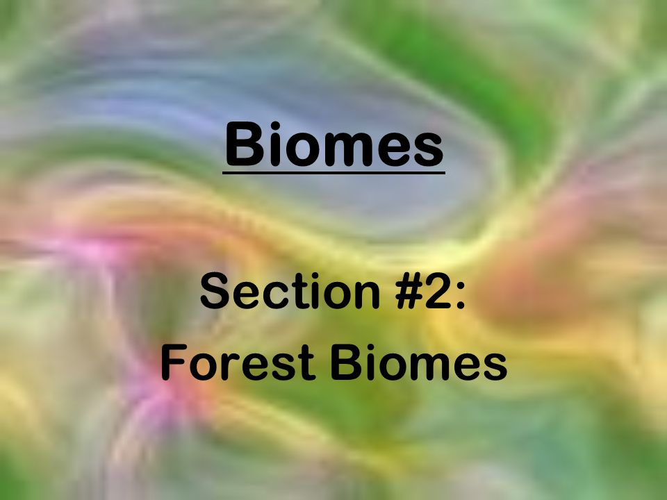 Biomes Section #2: Forest Biomes