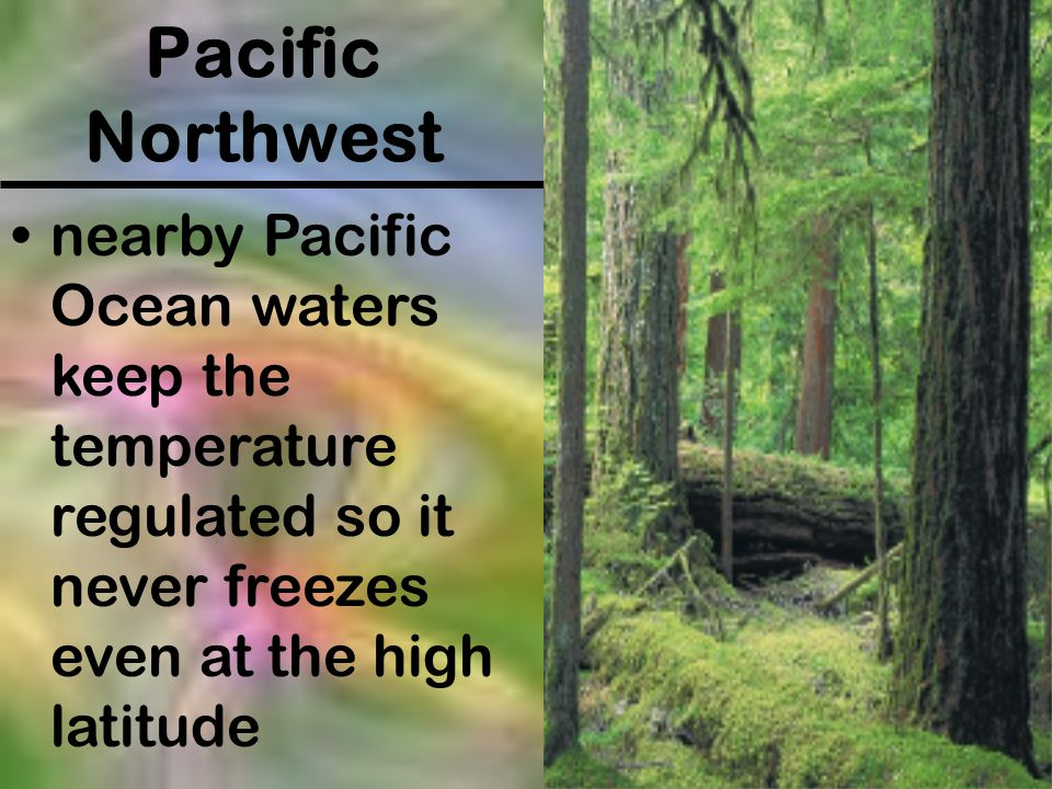 Pacific Northwest nearby Pacific Ocean waters keep the temperature regulated so it never freezes even at the high latitude