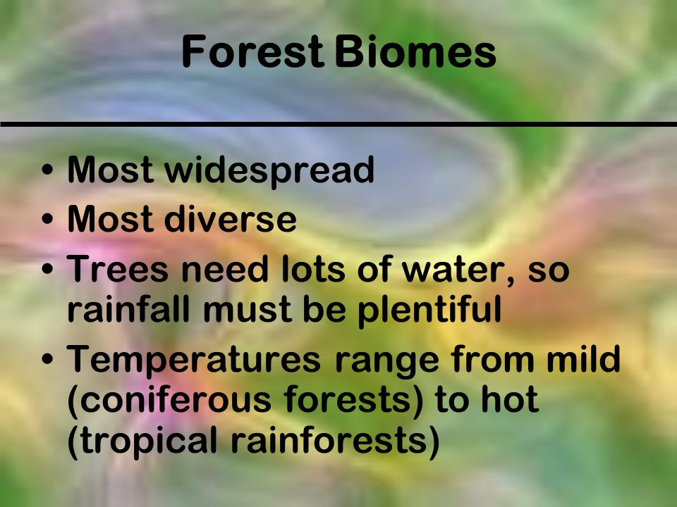 Most widespread Most diverse Trees need lots of water, so rainfall must be plentiful Temperatures range from mild (coniferous forests) to hot (tropica