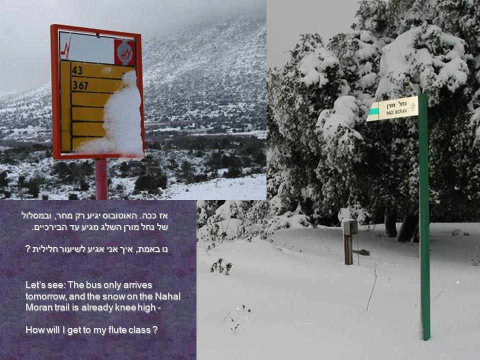 אז ככה. האוטובוס יגיע רק מחר, ובמסלול של נחל מורן השלג מגיע עד הבירכיים.