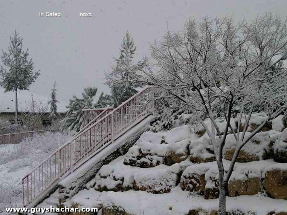 בצפת In Safed