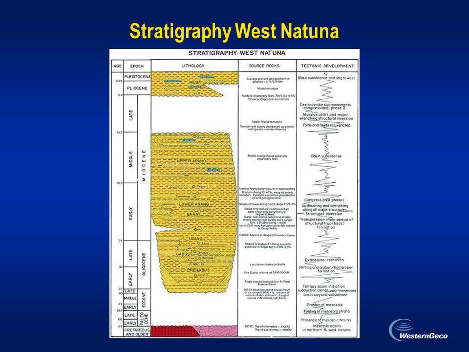 Stratigraphy West Natuna