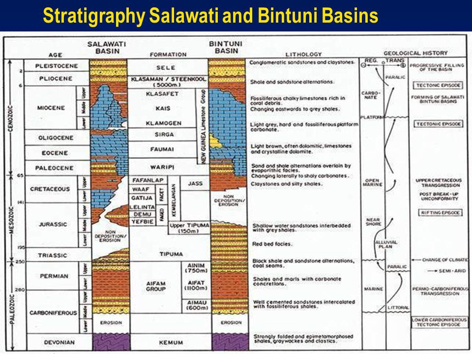 Stratigraphy Salawati and Bintuni Basins