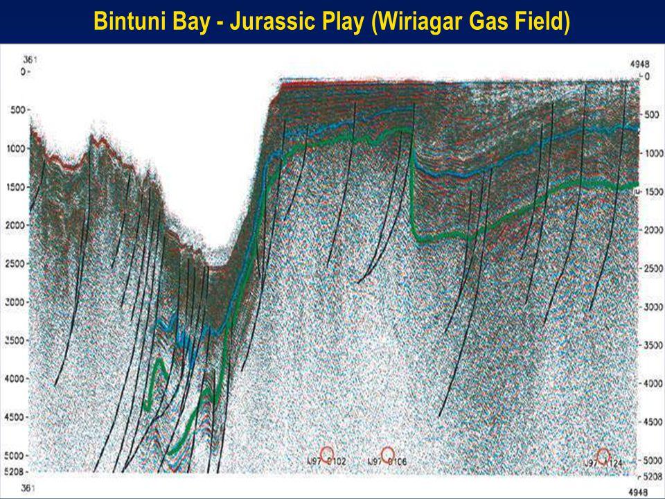 Bintuni Bay - Jurassic Play (Wiriagar Gas Field)
